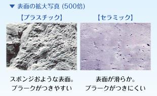 表面の拡大写真(500倍)